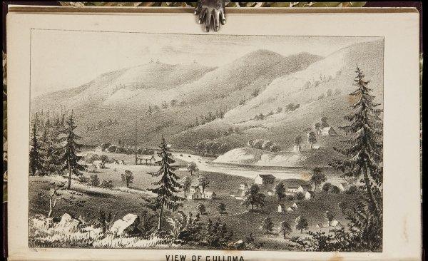 113: Delavan's Notes on California 1850