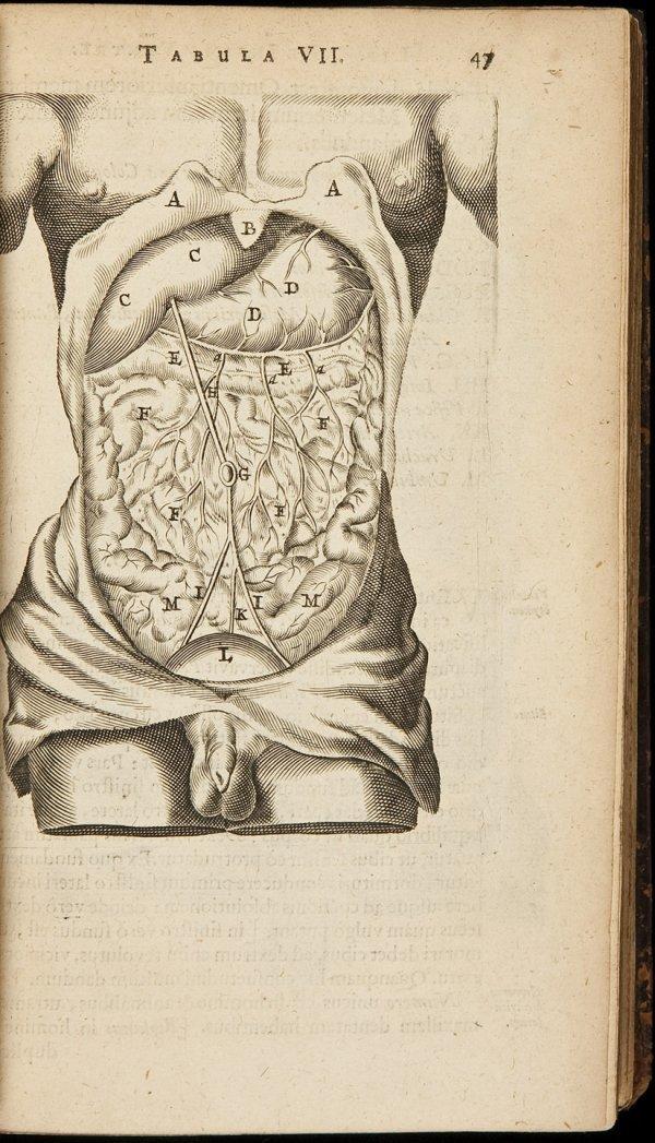 14: Bartholinus Anatomia 1666 with plates