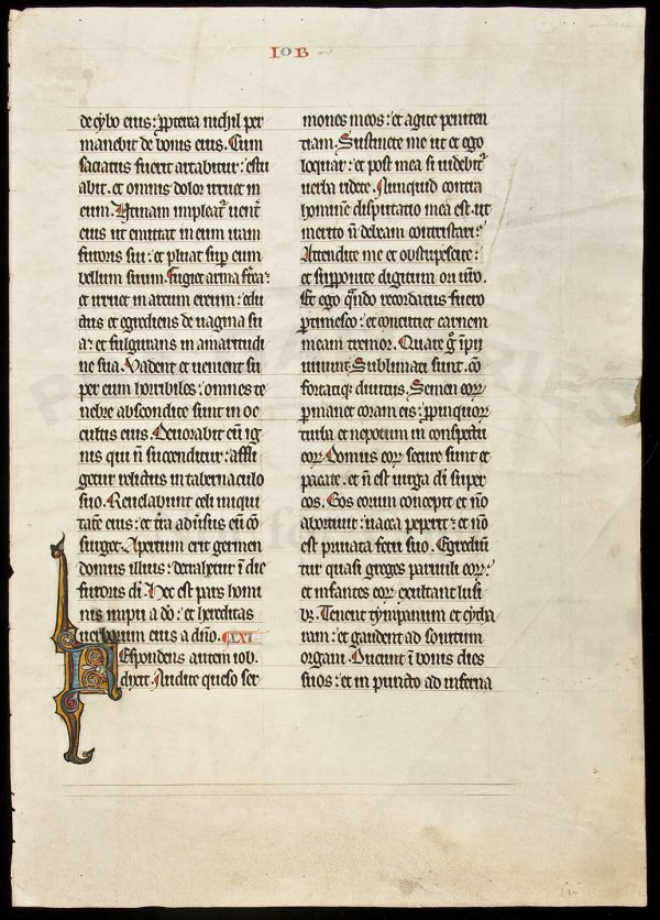 20: Leaf from a Monumental Bible, 13th century