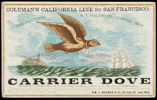249: Clipper Ship Card for Carrier Dove by Nesbitt