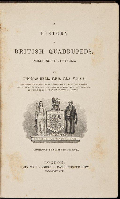 20: Bell's History of British Quadrupeds 1837