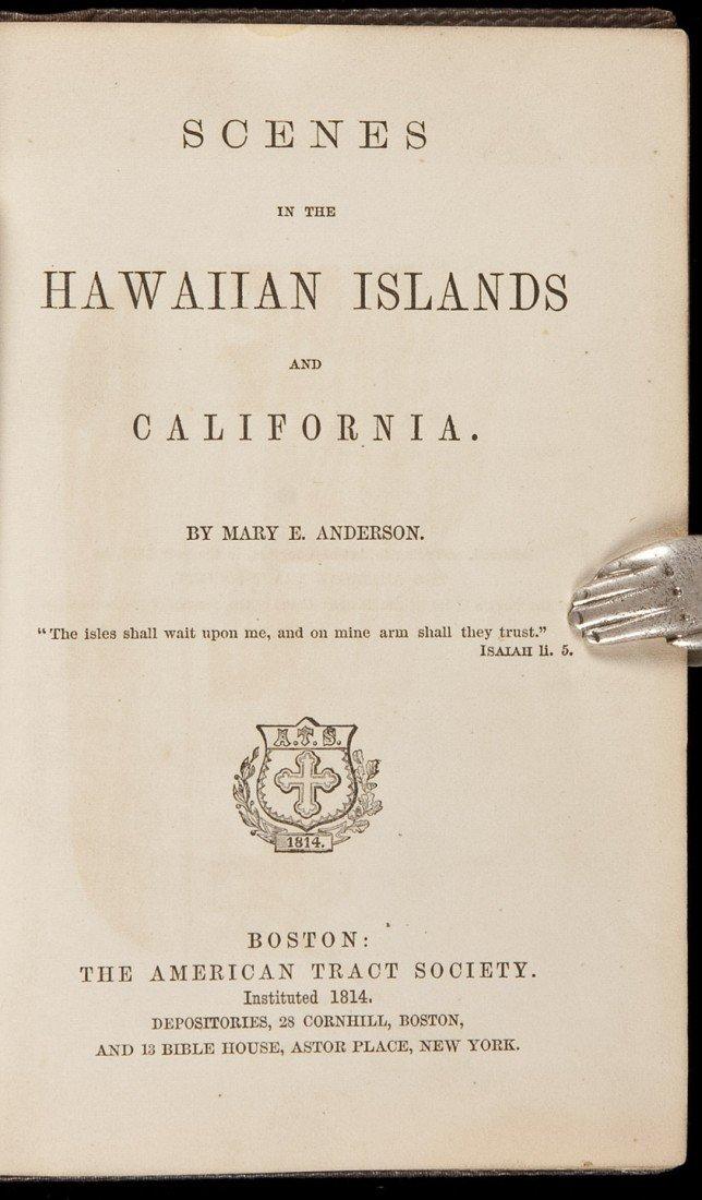 14: Scenes in the Hawaiian Islands 1865
