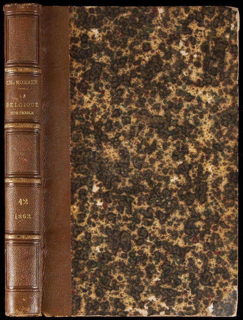 16: La Belgique Horticole by Ch Morren 1862
