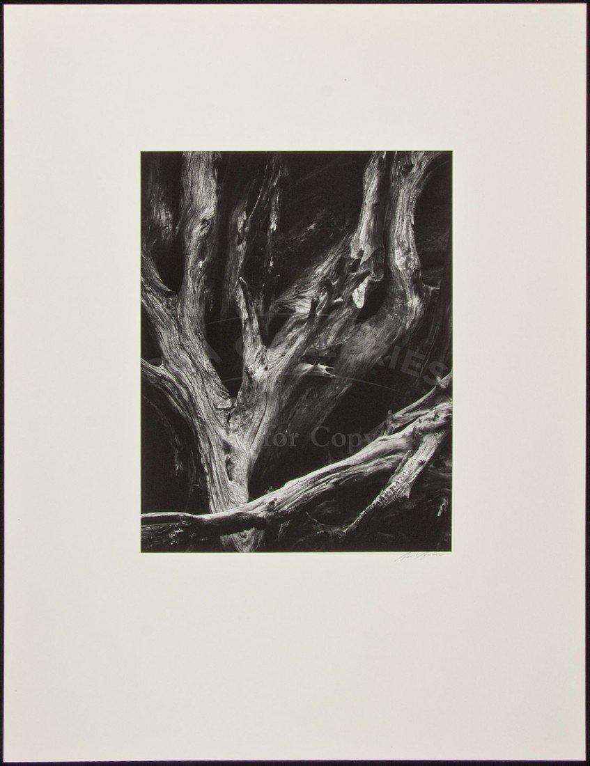 Ansel Adams Portfolio IV 15 original prints
