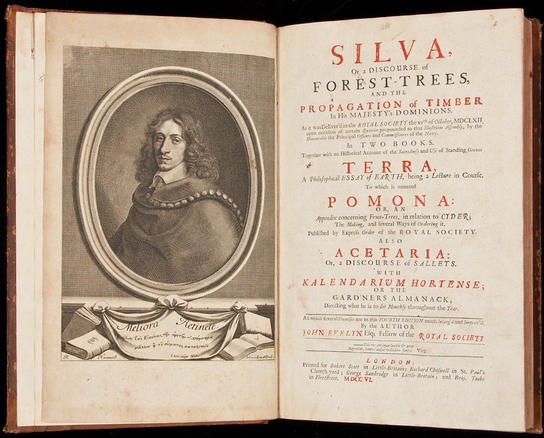 64: Silva, Or Discourse of Forest-Trees 1706