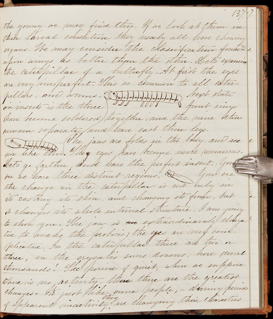 1: Notes on lectures by Louis Agassiz 1860-61