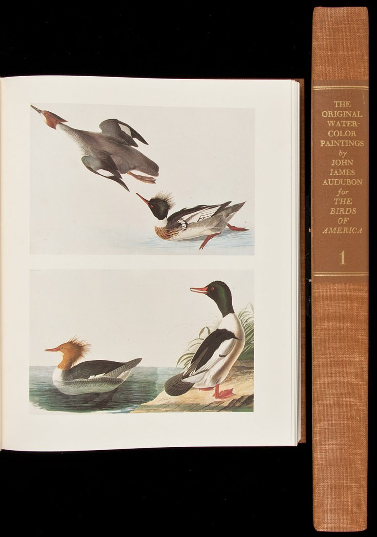 24: Audubon's Birds of America 1966 reprint 2 vols
