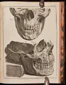 116: John Hunter on Human Teeth in Latin/Dutch