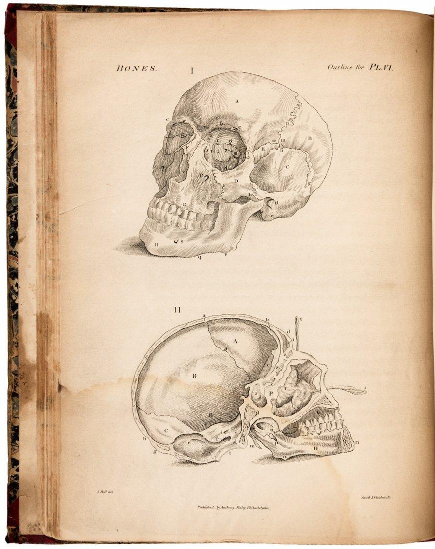 Bell's Engravings of Bones, Muscles, Joints 1816