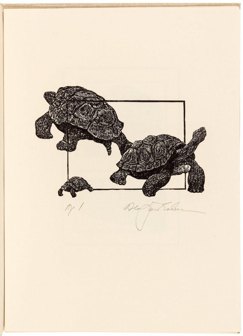 Cheloniidae Press DH Lawrence Tortoises