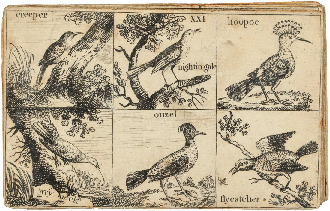 Rare set of instructional cards with animal cuts - 4