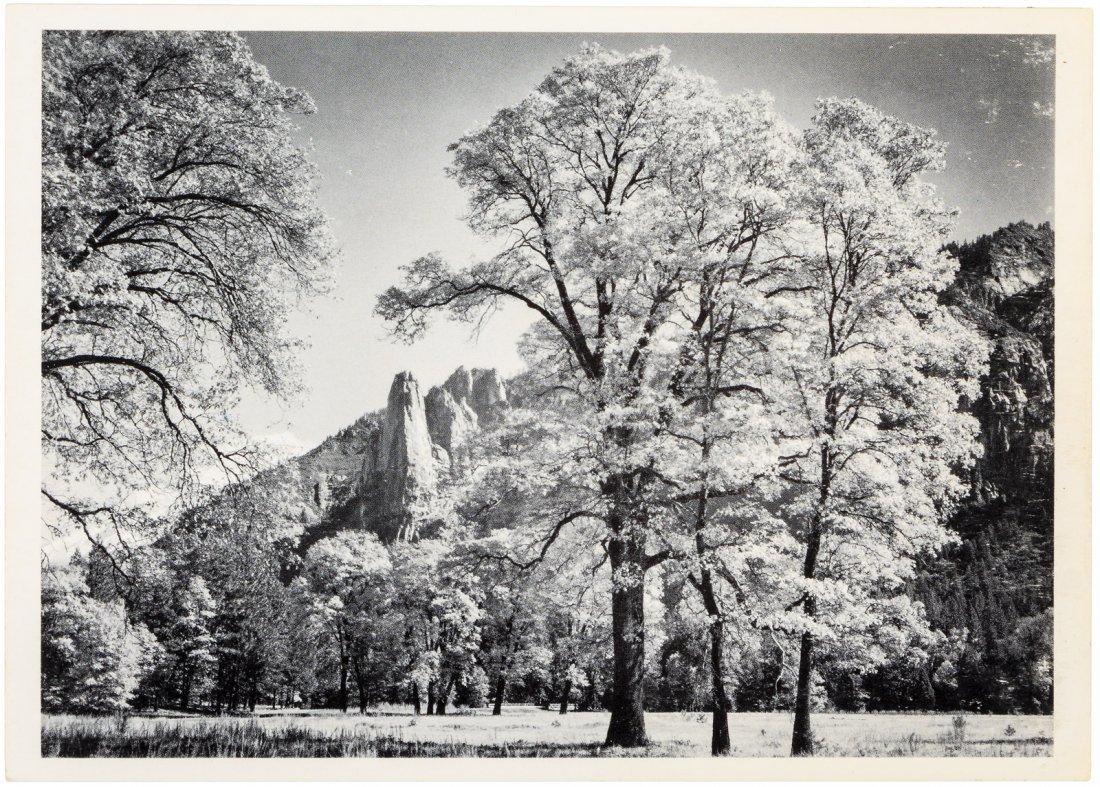 Yosemite postcard signed by Ansel Adams