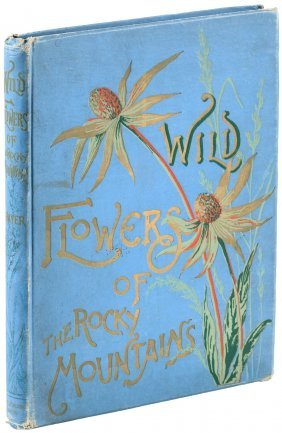 Wild Flowers Of The Rocky Mountains, Color Plates