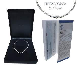 Tiffany & Co Diamond Mounting Platinum Necklace