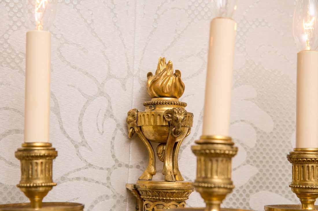 Group of 4  3-Light Sconces - 6