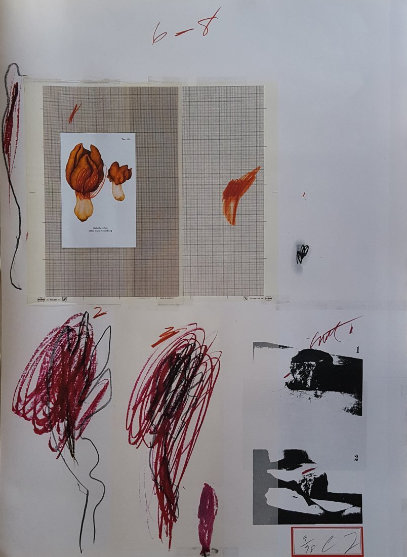 Natural History Part I Lithography by Cy Twombly 1974