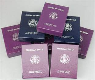 8 American Eagle Silver Bullion Coin in Cases