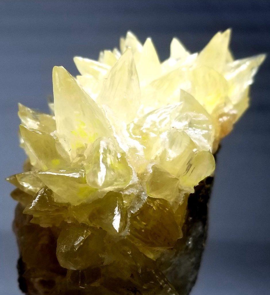 428.7 grams Natural Dog teeth Calcite Mineral - 5