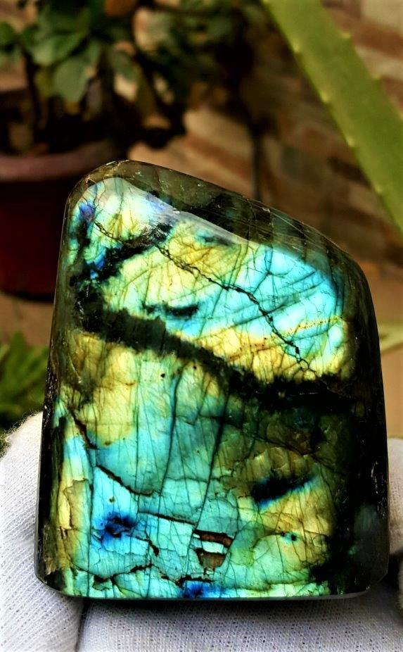 285.6 Grams Colorful Labradorite Healing Tumblr -