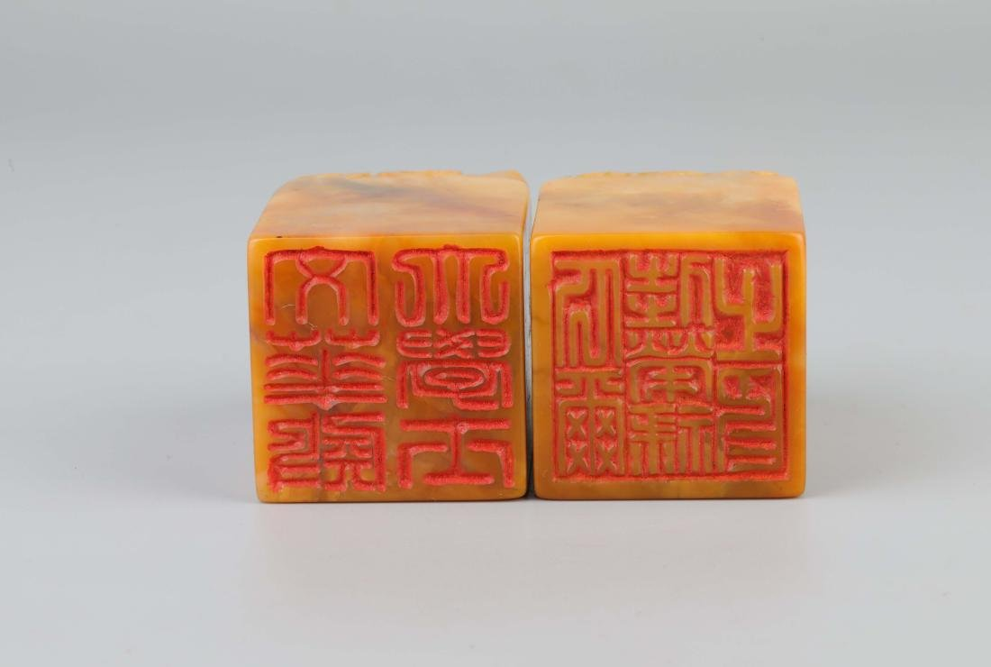 A PAIR OF TIANHUANG STONE SEALS - 5