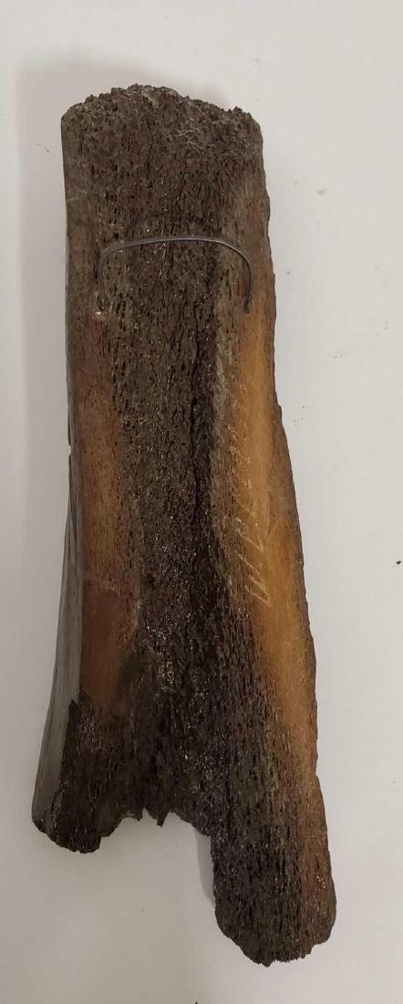 Mastodon Shin Bone carving by Alaskan artist W.C. Andy - 4