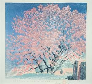 "Gustave Baumann ""Cottonwood in Tassel"" 94 / 125 Signed"