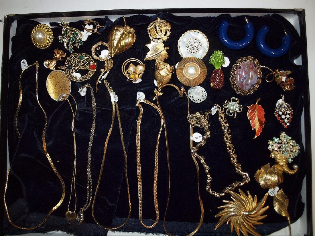 Showcse with brooches & necklaces