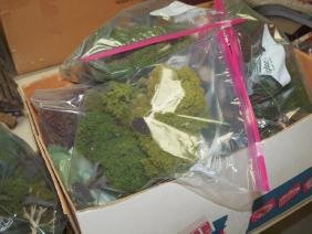 2 boxes of trees, bushes, and greenery for train layout