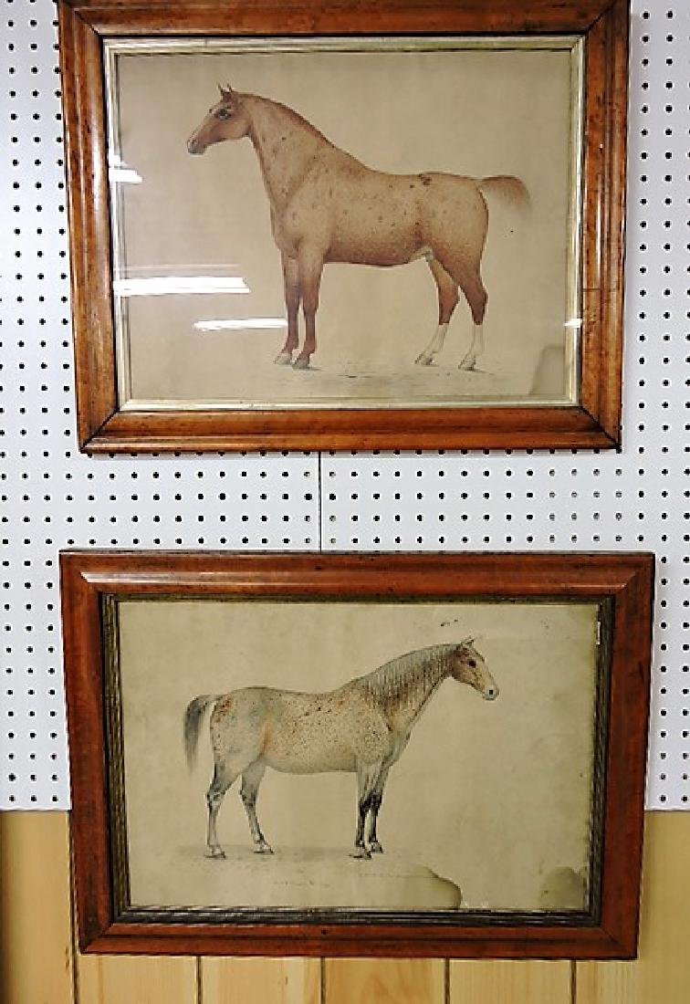 Pair of very early pencil drawings of horses, drawn by