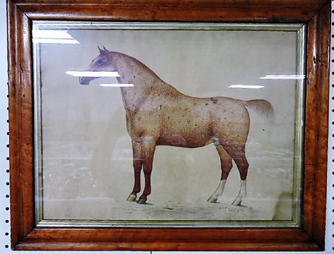 Pair of very early pencil drawings of horses, drawn by - 2