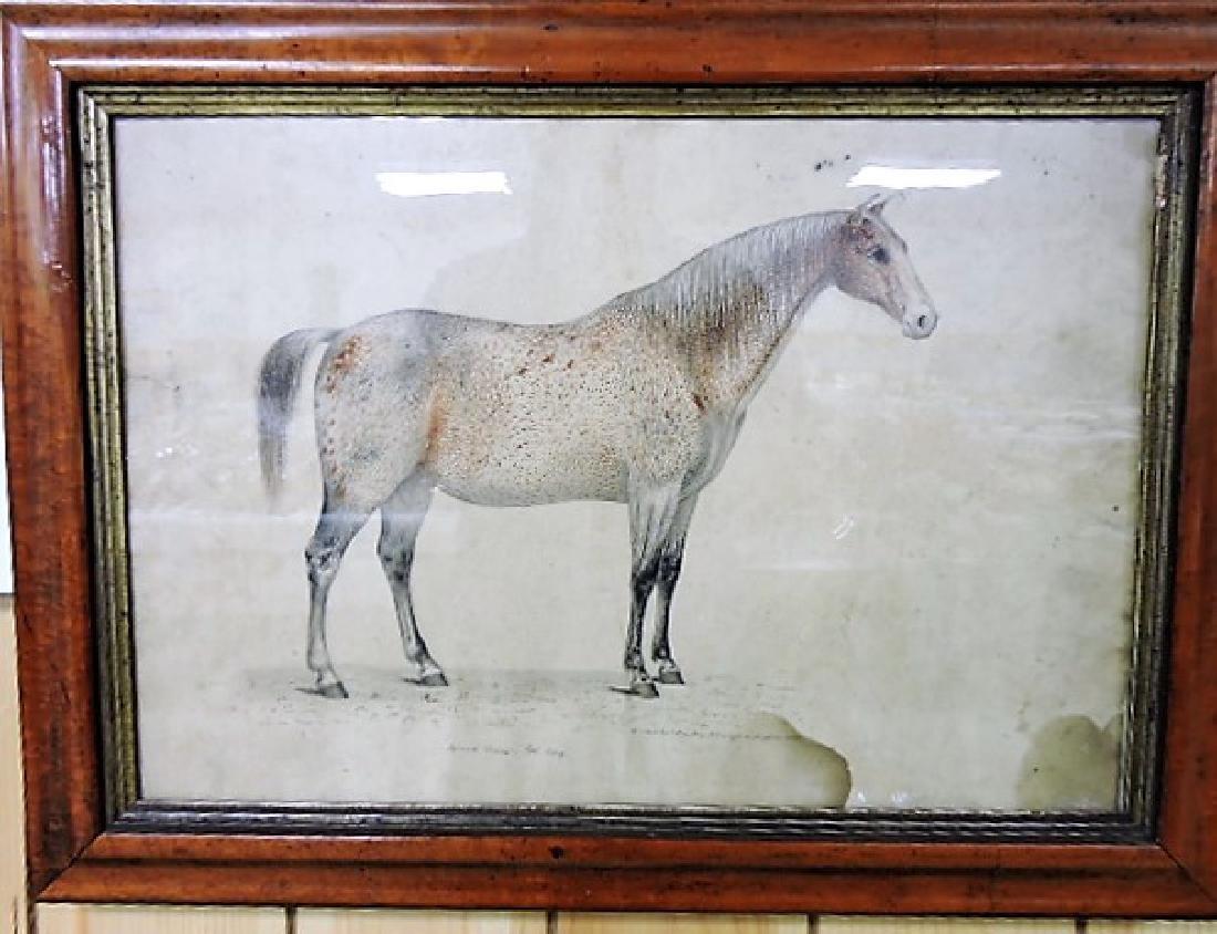 Pair of very early pencil drawings of horses, drawn by - 3