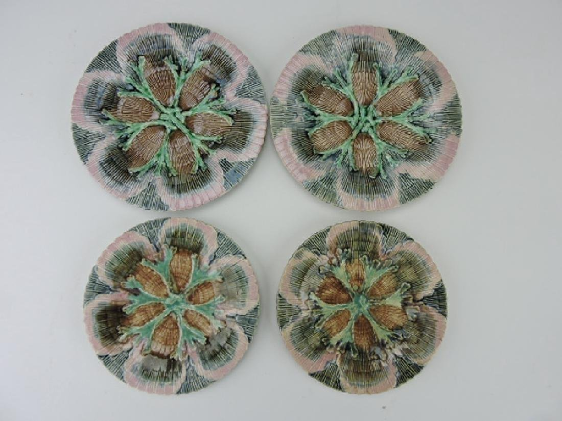Etruscan majolica shell and seaweed plate group-