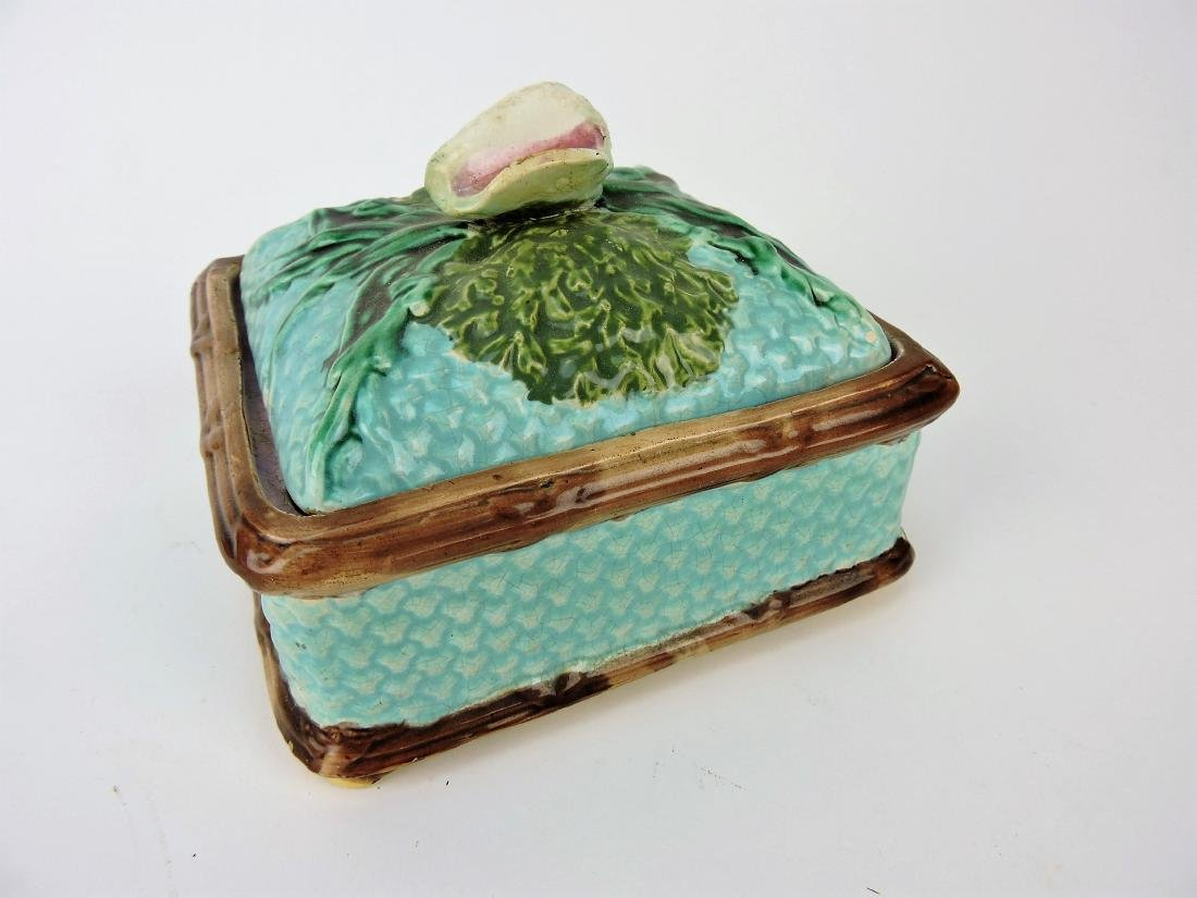 Majolica sardine box with conch shell