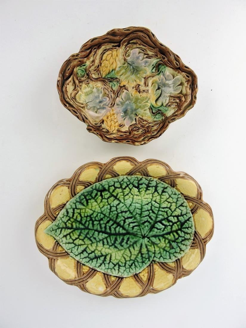 Etruscan Majolica begonia and