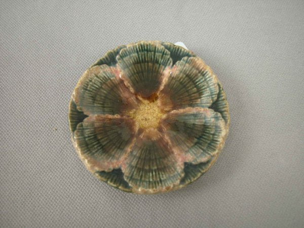 520: Majolica  ETRUSCAN shell and seaweed butter pat, 3