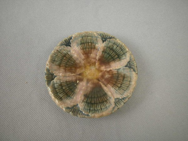 522: Majolica  ETRUSCAN shell and seaweed butter pat, 3