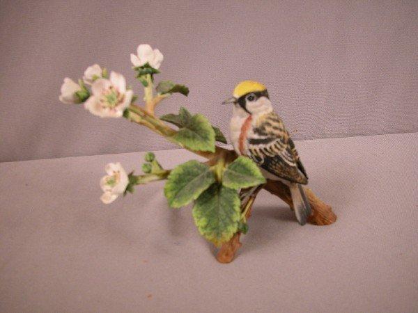 1017: Franklin Porcelain chestnut-sided warbler
