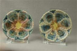 365 ETRUSCAN majolica pair of shell and seaweed butter