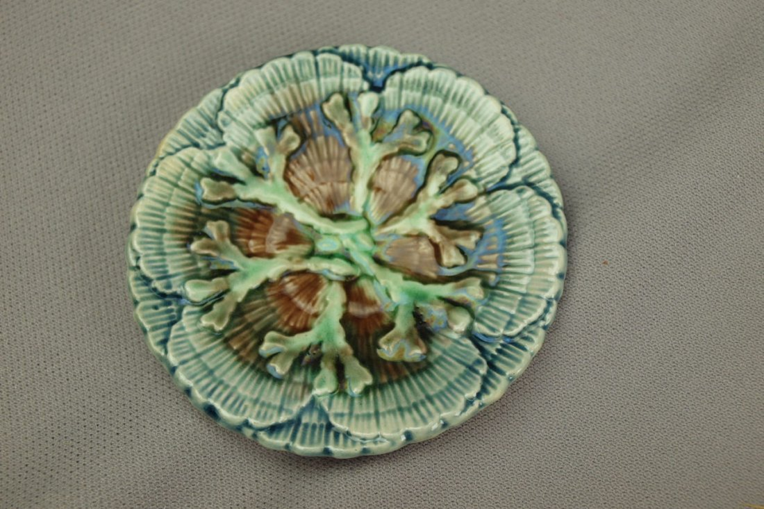 ETRUSCAN majolica shell and   seaweed butter pat with