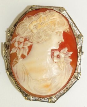 14k White Gold Mounted Cameo Brooch