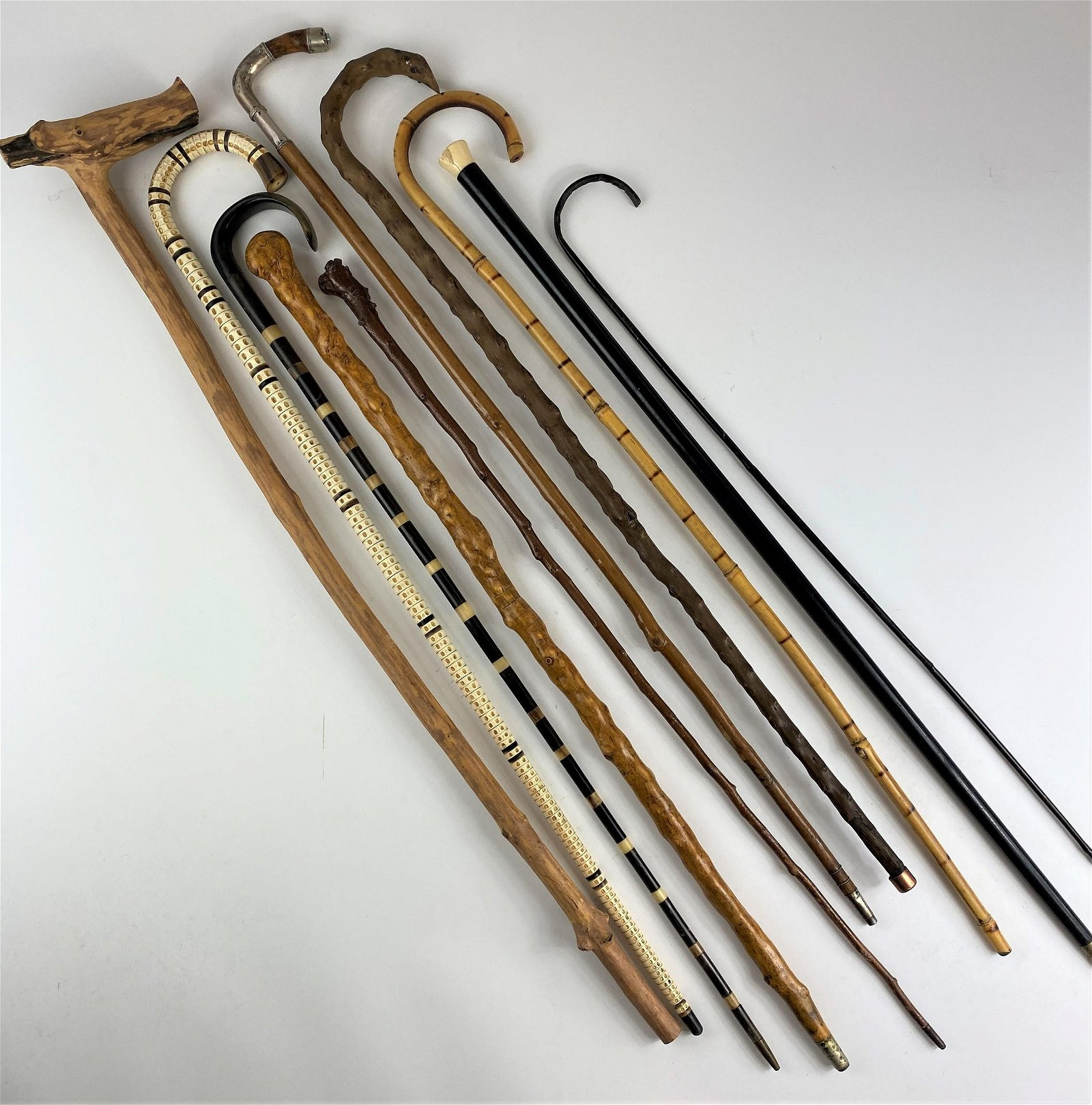 Collection of Canes, Including Vertebrae, Sword and