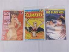 Lot of 3 Adult Comics Strips Chuck Austen, Climaxxx,