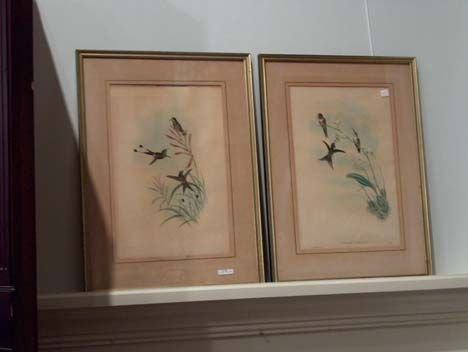 5406: TWO GOULD AND HART COLOR ORNITHOLOGICAL LITHOGRAP