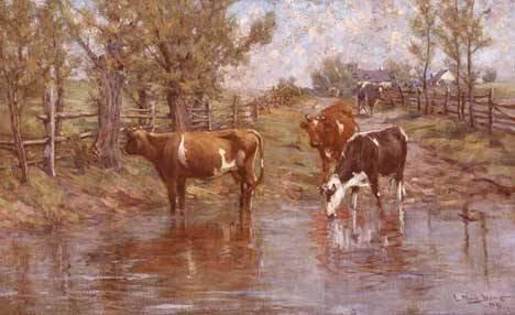 141: CHARLES MORRIS YOUNG (american 1869-1964)  COWS WA