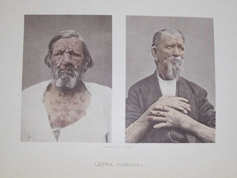 2007: 1 vol. Fox, George Henry. Photographic Illustrati