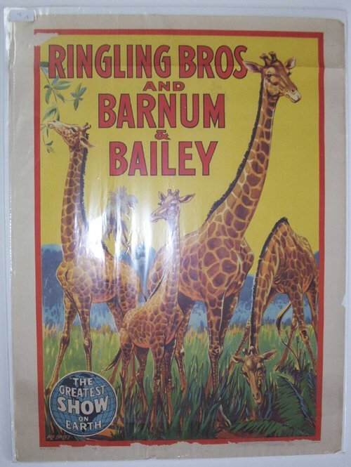 """4: 9 pieces.  Circus Posters: """"Ringling Bros."""
