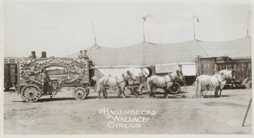 5: Lot.  Photographs - Circus Subjects: Centu