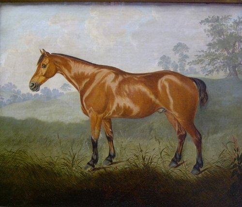 1166: W* PASCOE (British 19th Century) A BAY
