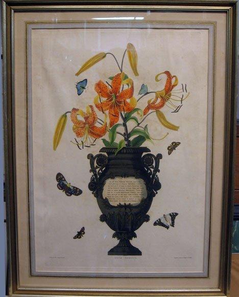 456: R. HAVELL - LILIUM TIGRINUM, , Colored etching. Si