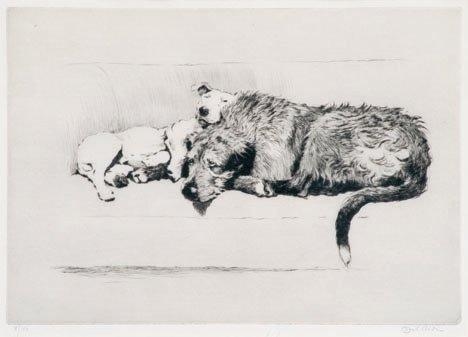 1003: CECIL ALDIN, (BRITISH 1870-1935), UNTITLED (DOGS